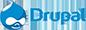 burhaniye-web-tasarim_0015_drupal-logo-trans